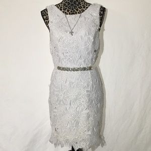 ASTR Stunning white lace dress